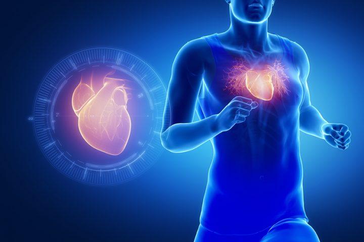 Koenzīms Q10 – palīgs sirds enerģijas vairošanā