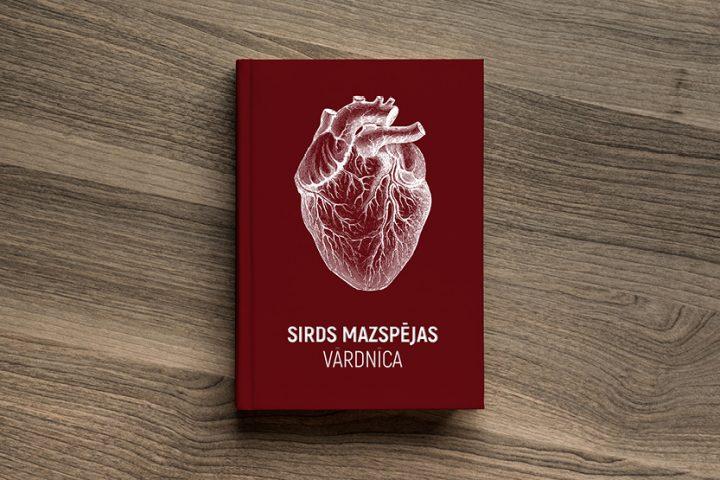 Sirds mazspējas terminu vārdnīca